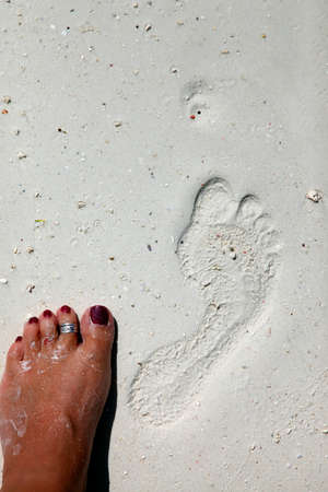 footmark: Footprints on a coral beach nearby stone town. Zanzibar Stock Photo