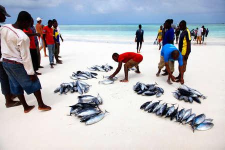 Zanzibar, Tanzania - January 7, 2016: Traditional fish market on the beach in Nungwi. Zanzibar 新聞圖片