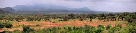 Panorama of 8 frames Tsavo National Park in Kenya Stock Photo