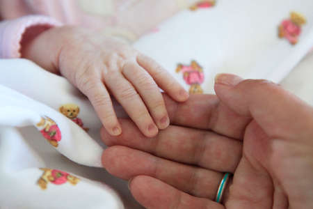 familias jovenes: The image of hands of parent and the child