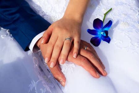 Hands of the bride and groom on the background of a wedding dress.