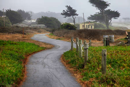 Foggy morning in California. USA, Half Moon Bay.