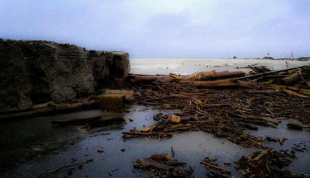 Wood and log debris from Lake Ontario storm surge due to constant rain.