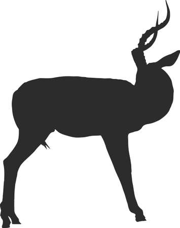 Silhouette of a black faced impala looking back - digitally hand drawn illustration.