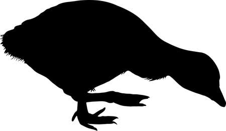 Silhouette of a graylag goose chicken- digitally hand drawn illustration