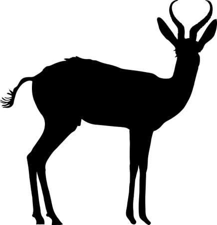 Silhouet van een permanente springbok antilope - digitaal hand getekende vectorillustratie