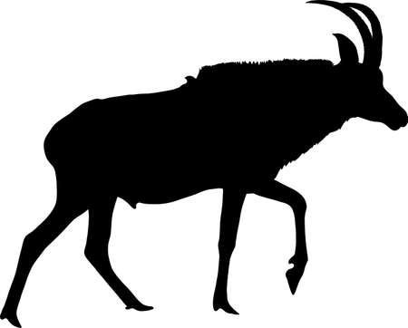 Silhouet van een lopende paardantilope, hand getrokken vectordieillustratie op witte achtergrond wordt geïsoleerd.