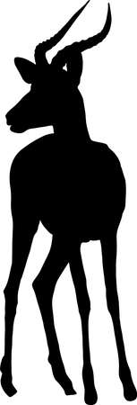 Silhouette of a black-faced impala antelope, hand drawn vector illustration isolated on white background.
