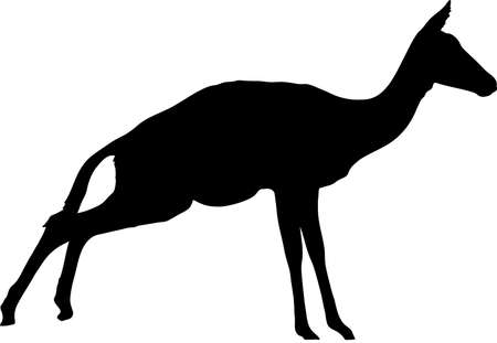 Silhouette of blackfaced impala antelope on the jump, hand drawn vector illustration isolated on white background