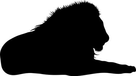 mammalia: Silhouette of a lion predator, hand drawn vector illustration isolated on white background