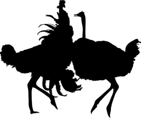 Silhouet van twee vechtstruisvogels - digitaal hand getrokken vectorsilhouet, zwarte geïsoleerd op witte achtergrond