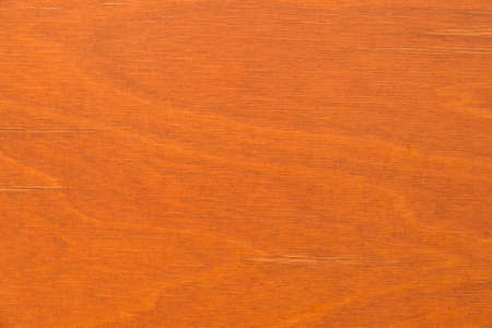 Close-up of a natural structured wooden panelling, seen in cologne, germany