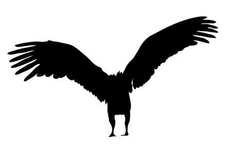Mening over het silhouet van een Afrikaanse gier - digitaal hand getrokken vectorillustraion Stock Illustratie
