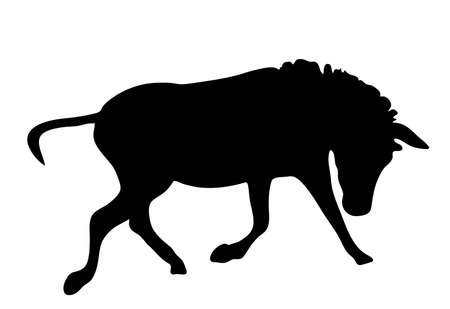 View on the silhouette of a moving zebra - digitally hand drawn vector illustraion Illustration