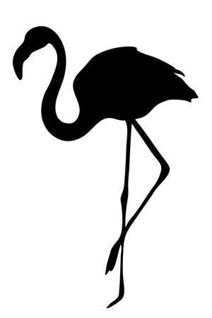 illustraion: View on the silhouette of a flamingo - digitally hand drawn vector illustraion