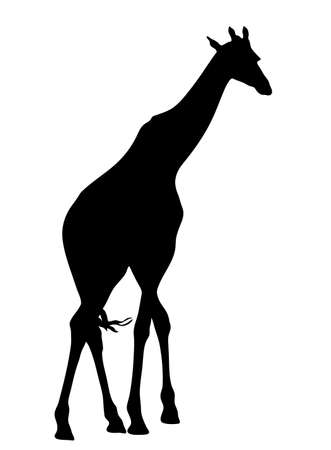 cutouts: View on the silhouette of a giraffe - digitally hand drawn vector illustraion Illustration
