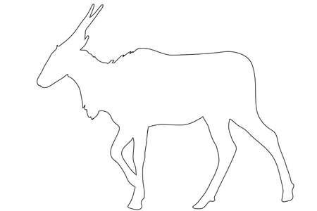 Outline of an african eland antelope - digitally handdrawn illustration on white background Illustration