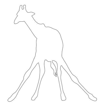 camelopardalis: Outline of an african Giraffe - Digitally Hand Drawn Illustration
