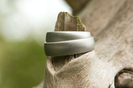View of a pair of white golden wedding rings connected to nature Stock Photo