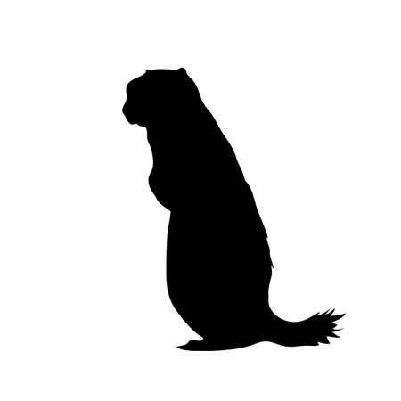Digitally handdrawn Silhouette of a ground squirrel isolated on white background Ilustração