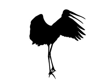 Digitally handdrawn Silhouette of a stork isolated on white background