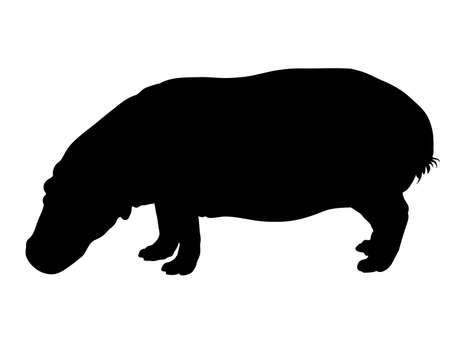 Digital handgezeichnete Silhouette eines Flusspferds lokalisiert auf weißem Hintergrund
