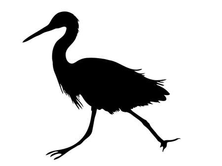 Digitally handdrawn Silhouette of a sea bird isolated on white background Illustration