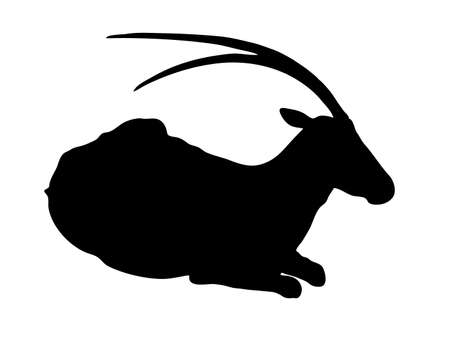 Digitally handdrawn Silhouette of a antelope isolated on white background