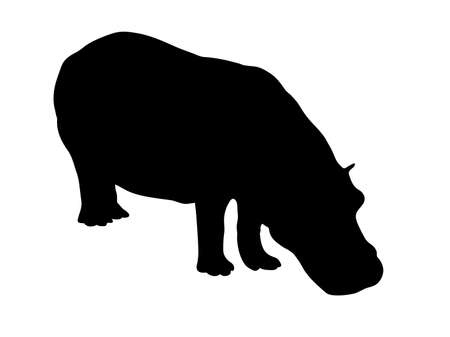 Digitally handdrawn Silhouette of a hippo isolated on white background