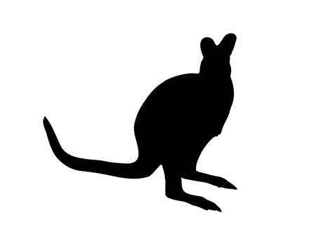 Digitally handdrawn Silhouette of a kangaroo isolated on white background