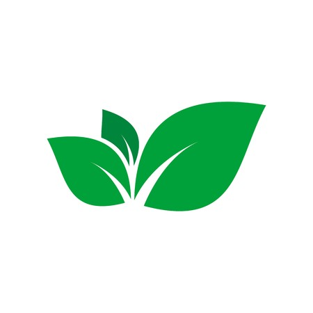 vegetate: leaf plant icon vector Illustration