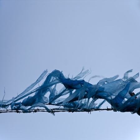 Polythene waste impaled on barbed-wire against blue sky; conceptual image of urban waste and trash