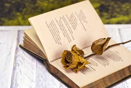 Vintage poetry book with dead rose; lying on table against countryside background photo