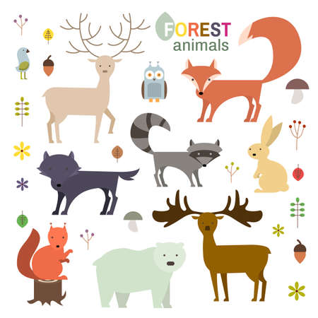 bear berry: Forest animals set in flat style. Wolf, fox, raccoon, owl, deer, bear, squirrel,moose, hare isolated on white.