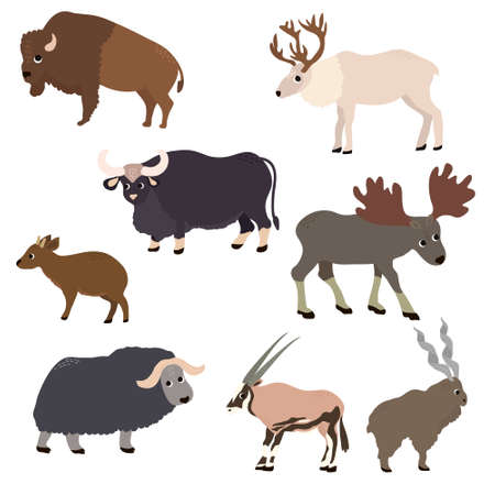 Wild animals set in flat style. Antelope, deer, bison, musk ox, goat, elk, bull, isolated on white. Vector Illustration