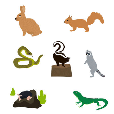 Small animals set in flat style. Snake, hare, squirrel, skunk, raccoon, mole, lizard, isolated on white. Vector Illustration