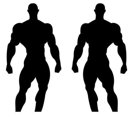 Silhouette illustration of a bodybuilder.Male muscular anatomy. Vector illustration Ilustração