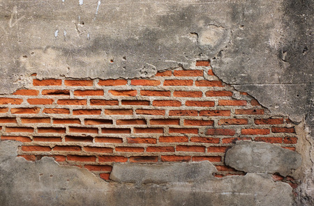 ancient buildings: old grunge brick wall with space for text, texture background