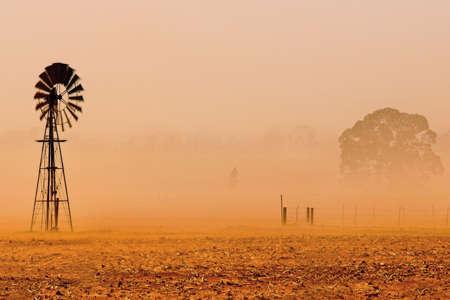 staub: Free State Staubsturm in der Trockenzeit