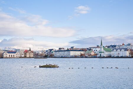 Ducks and swans on the lake Tjornin in Reykjavik, Iceland Editorial