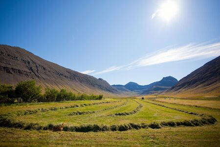Landscape of summer in the mountains of Iceland Stock Photo - 11699937