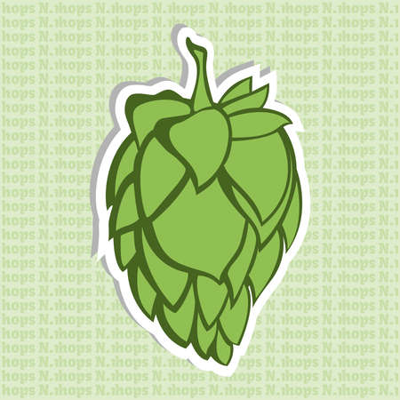 restlessness: Green Hop Flower Vector Illustration. Final image ready for beer marketing & selling purposes. Also used in herbal medicine as a treatment for insomnia, anxiety, restlessness. Illustration