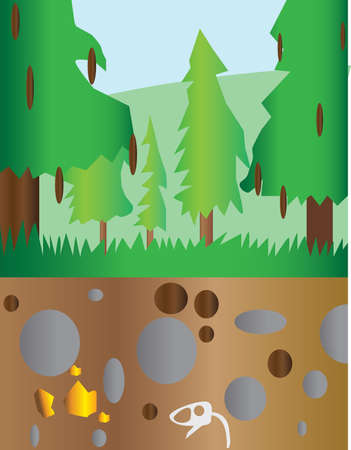 under water grass: Pine trees at mountain section landscape with brown ground and stones. Digital background vector illustration. Illustration