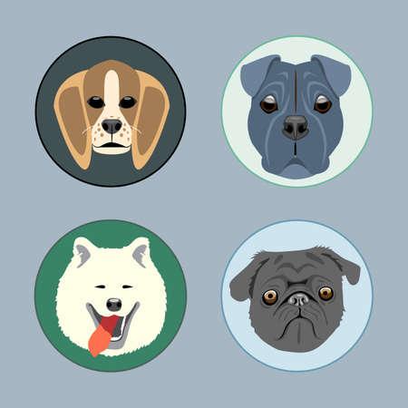 Dogs set flat style. Husky, rottweiler, taxa, victorian. Digital vector image Ilustração