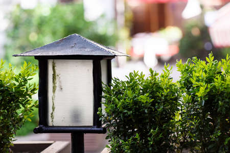 Photo of street lantern close up at a summer cafe terrace with green shrubs Stock Photo