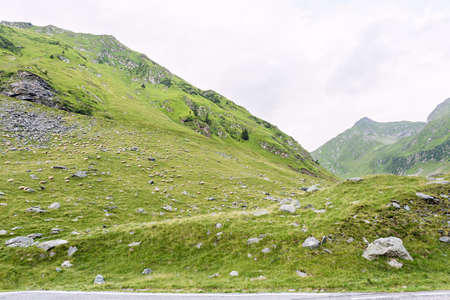 Photo of green capra peak, and a field full of sheeps grazing in fagaras mountains, Romania. Stock Photo