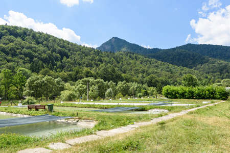 Photo of trout fish farm and green forest in brasov mountains in the morning, Romania.
