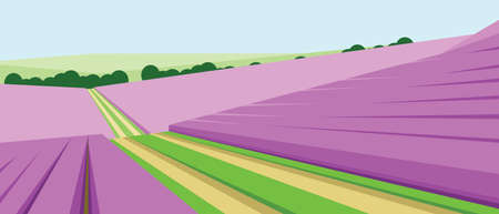 green fields: Vector abstract green landscape with pink fields, hills and roads, flat zigzag style. Illustration