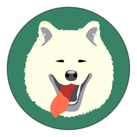 Digital vector samoyed dog face, in green circle, flat style