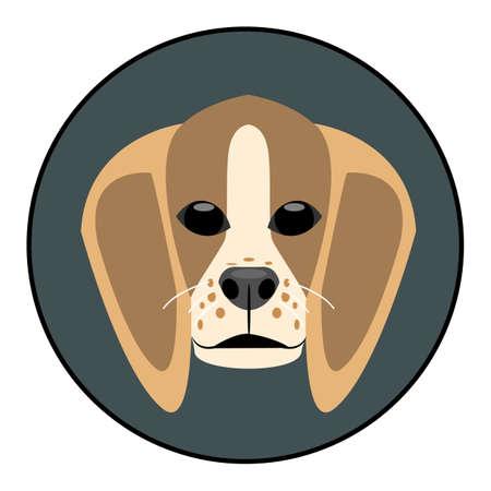 hunter playful: Digital vector beagle dog face, in dark silver circle, flat style